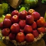Aj jablká majú svoje dni
