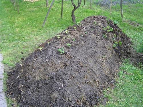 nemecká kopa