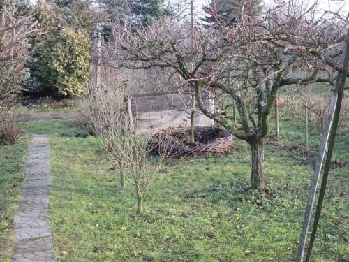 diviaky v zahradke