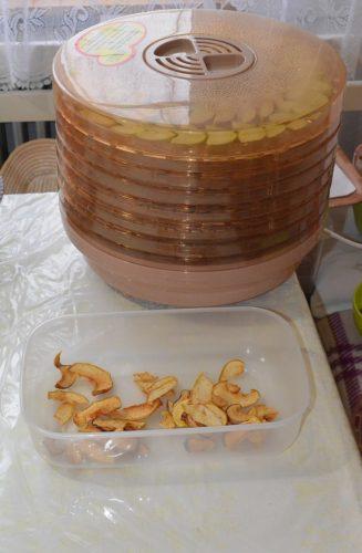 sušenie jabĺk
