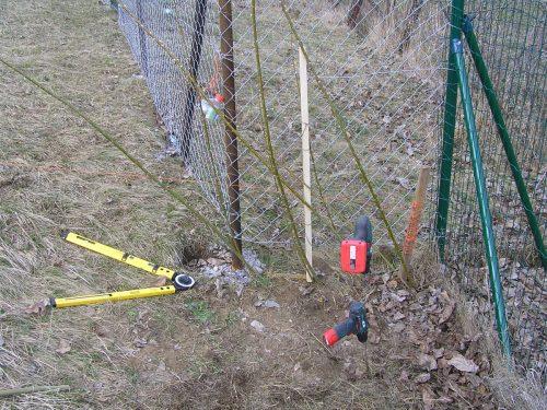 prútiky vŕby na plot a náradie