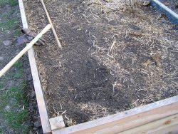 kyprá pôda pod mulčom