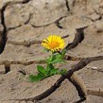 Monitoring sucha nie je riešením