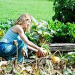Nikto nie je záhradkár, kým nezíska vlastný pozemok