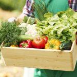 6 druhov zeleniny, ktoré by vovašej záhrade nemali chýbať